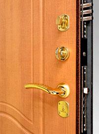 Входная металлическая дверь «Аргус-3»